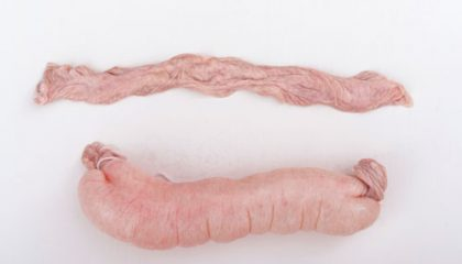 Peces de semirrissat de porc